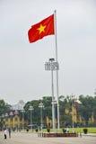 Bandeira vietnamiana Foto de Stock