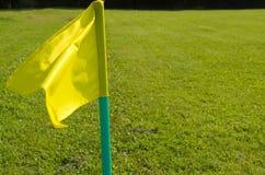 Bandeiras amarelas na grama verde de um campo de ação do futebol Foto de Stock Royalty Free