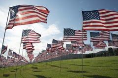 Bandeiras americanas, foto de stock