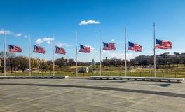 Bandeiras americanas com o Capitólio dos E.U. no fundo - Washington, D C , EUA Imagem de Stock