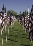 911 bandeiras americanas do campo cura memorável Fotografia de Stock Royalty Free