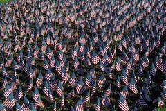 Bandeiras americanas em honra de nossos veteranos Fotografia de Stock