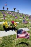 Bandeiras americanas no cemitério nacional Imagens de Stock