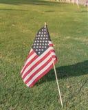 Bandeiras americanas no Dia da Independência do gramado da grama verde Imagem de Stock Royalty Free
