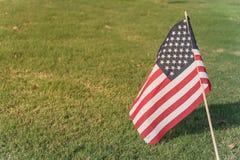 Bandeiras americanas no Dia da Independência do gramado da grama verde Fotos de Stock Royalty Free