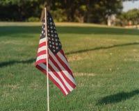 Bandeiras americanas no Dia da Independência do gramado da grama verde Foto de Stock Royalty Free