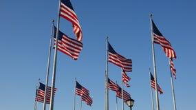 Bandeiras americanas que acenam em mastros de bandeira fotografia de stock