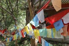 Bandeiras budistas da oração Fotos de Stock Royalty Free