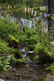 Bandeiras butanesas da oração na madeira, windhorse, longta imagem de stock royalty free