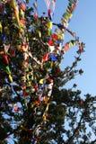 Bandeiras coloridas da oração Imagens de Stock