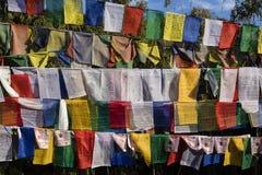 Bandeiras coloridas da oração do buddhism no monte do obervatório em Darjeeling Imagens de Stock