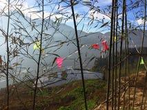 Bandeiras coloridas em terraços do arroz de Yuanyang Fotos de Stock Royalty Free