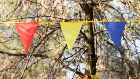 Bandeiras coloridas no outono da natureza Fotografia de Stock