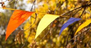 Bandeiras coloridas no outono da natureza Imagens de Stock