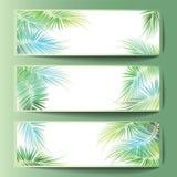 Bandeiras com os ramos de palmeira Fotos de Stock