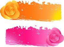 Bandeiras com rosas - cor-de-rosa e laranja Foto de Stock Royalty Free