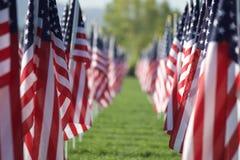 Bandeiras curas de 9/11 de campo Fotos de Stock