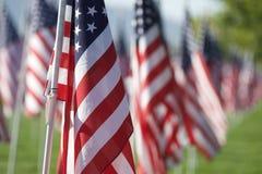 Bandeiras curas de 9/11 de campo Fotografia de Stock Royalty Free