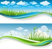 Bandeiras da grama do verão ilustração do vetor