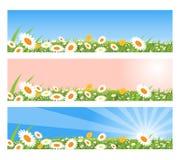 Bandeiras da mola ilustração royalty free