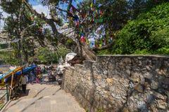 Bandeiras da oração no stupa de Swayambhunath fotos de stock royalty free