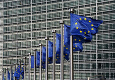 Bandeiras da UE Fotografia de Stock Royalty Free