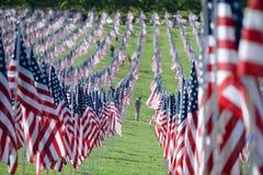Bandeiras da valentia fora de Saint Louis Art Museum Fotos de Stock