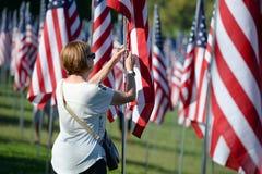 Bandeiras da valentia fora de Saint Louis Art Museum Imagem de Stock