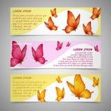 Bandeiras das borboletas ajustadas ilustração royalty free