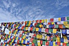Bandeiras de Budhist fotografia de stock royalty free