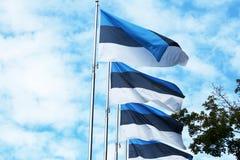 Bandeiras de Estônia Tallinn, Estónia Nirdic, Báltico fotos de stock royalty free