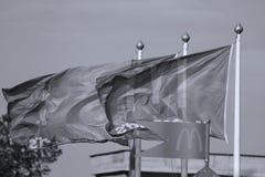 Bandeiras de McDonalds imagem de stock royalty free
