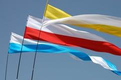 Bandeiras de ondulação Fotos de Stock Royalty Free