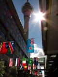 Bandeiras de RWC 2011 Imagens de Stock