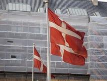 Bandeiras dinamarquesas Fotografia de Stock Royalty Free