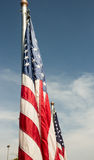 Bandeiras do Estados Unidos Foto de Stock Royalty Free