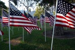 Bandeiras do Estados Unidos Feriado de Memorial Day Fotos de Stock
