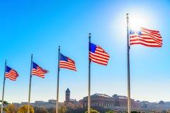 Bandeiras do Estados Unidos fotografia de stock