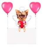 Bandeiras do feriado com balões e cão Imagens de Stock