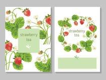 Bandeiras do fruto e da baga do vetor Imagens de Stock Royalty Free