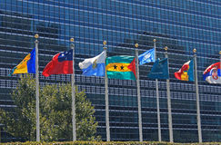 Bandeiras do UN na frente de United Nations que constroem em New York City Fotos de Stock Royalty Free