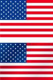 Bandeiras dos E.U. ilustração do vetor