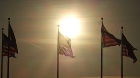 Bandeiras dos E.U. no pôr do sol Foto de Stock