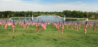 Bandeiras dos E.U. que acenam fora do museu de arte de St Louis Imagem de Stock
