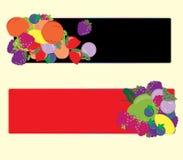 Bandeiras dos frutos Imagens de Stock