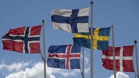 Bandeiras escandinavas video estoque