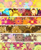Bandeiras florais Imagem de Stock Royalty Free