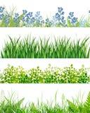Bandeiras florais da grama verde ilustração do vetor