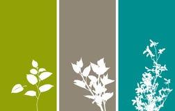 Bandeiras florais verticais ilustração stock