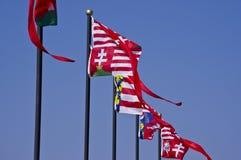 Bandeiras históricas húngaras Fotografia de Stock